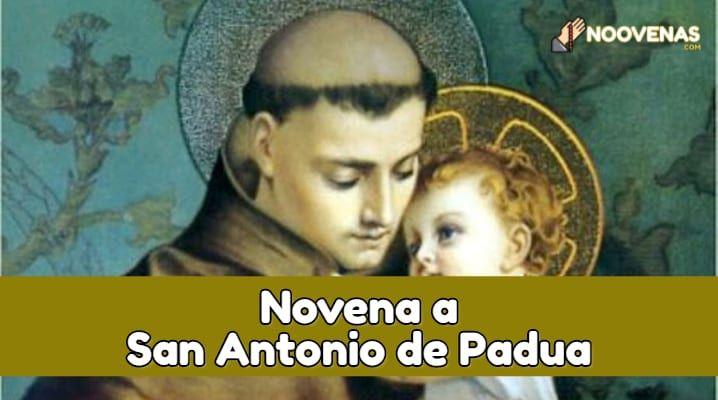 Novena A San Antonio De Padua